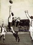 1950 Newtown's Sid Thurwell v Balmain