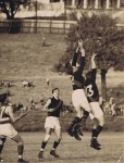 1951 North Shore v Eastern Suburbs