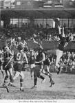 1971 Sydney FL Grand Final