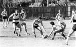1980 East Sydney v Newtown
