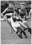 1983 Newtown v East Sydney