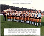 1985 NSW Team v Tas small