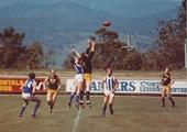 1978 NSW Police v Tasmania small