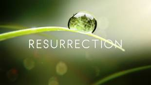 Resurrection small